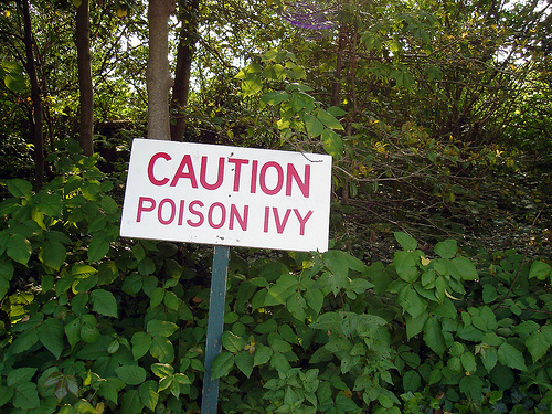 how to make ricin poison at home